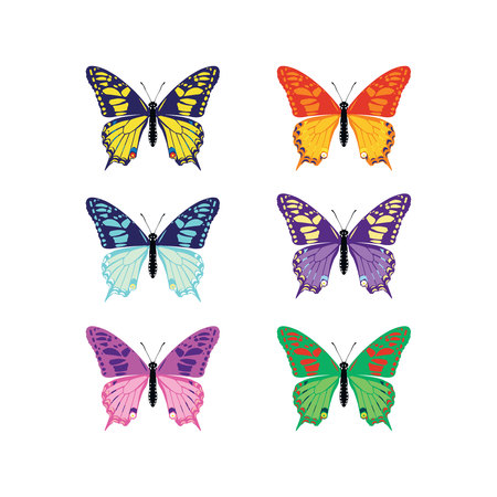 Set of colorful butterflies silhouettes collection spring and summer with different shapes of wings. Isolated on white background, for illustration, ornaments, tattoo. Vector illustration.