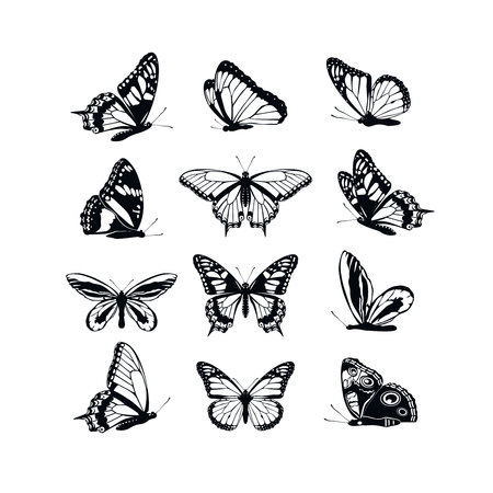 Set butterflies collection spring and summer black silhouettes on white background. Icons different shapes wings, for illustration, ornaments, tattoo, decorative design elements. Vector illustration Stock Illustratie