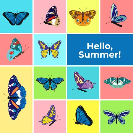 Colorful banner of butterflies, text Hello Summer. Set of spring and summer butterfly icons. Background for promotional posters, advertising, booklet, discount banners, sale. Vector Illustration.