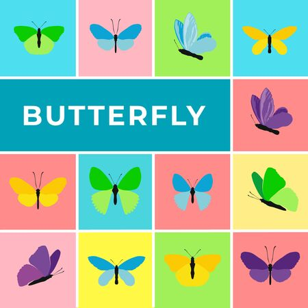 Colorful banner of butterflies. Set of spring and summer butterfly icons, text Butterfly. Background for promotional posters, advertising flyers, booklet, discount banners, sale. Vector Illustration