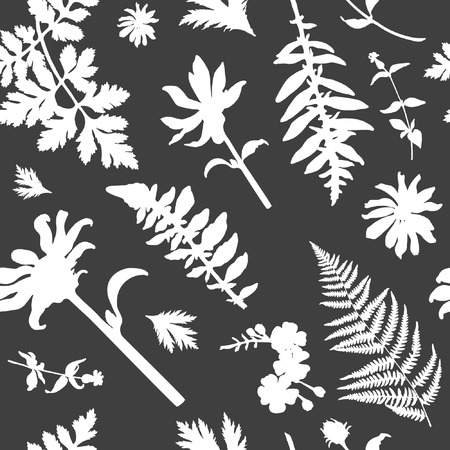 Seamless floral pattern with wild plants and herbs. Vector silhouettes of flowers and grass in grey and white colours. Endless texture for fashion design, textile, backgrounds and prints. Illustration