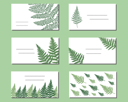 Set of vector business cards with wild fern. Collection of floral paper labels for announcements. Rectangular shapes. Template for design, business cards, greeting cards, invitations and decoration.