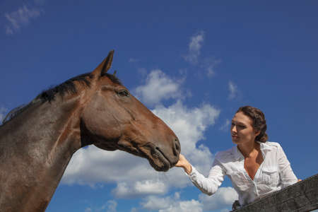 he woman strokes the horse in the face. Against the background of the sky, close-up, there is a place for text. High quality photo