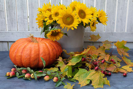 A large, orange pumpkin, nearby maple leaves and a bouquet of yellow sunflower flowers in a bucket are on the table, outdoors. Autumn background. High quality photo