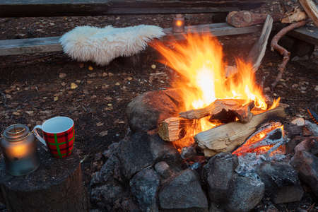 Bonfire in the evening outdoors. Vacation concept. High quality photo