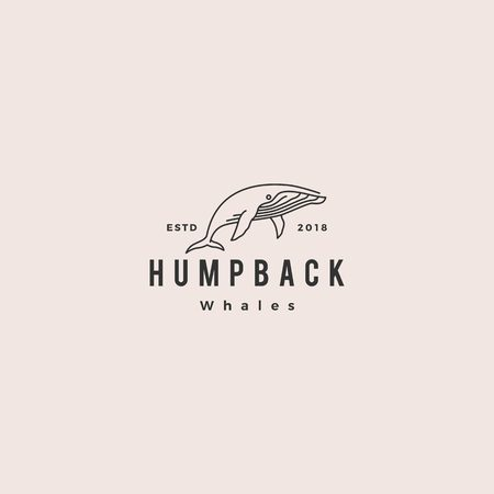 humpback whale logo hipster vintage retro icon vector illustration  イラスト・ベクター素材