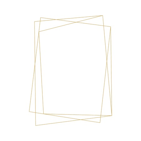 geometric frame ornament decoration vector line outline gold element