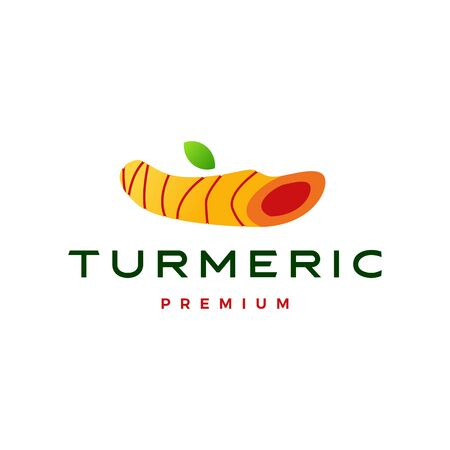 turmeric logo vector icon illustration