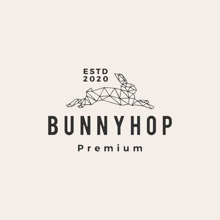 geometric rabbit bunny hop hipster vintage logo vector icon illustration