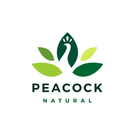 peacock leaf natural vector icon illustration