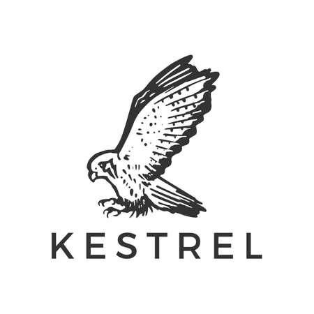 flying kestrel bird vector icon illustration Vectores