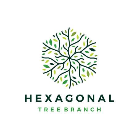 hexagonal tree branch logo vector icon illustration