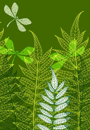 bookmark background: Card with fern and dragonfly, beautiful illustration