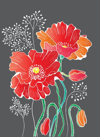 abstract floral red poppy background, illustration Vector