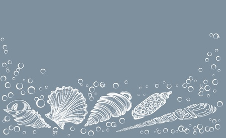 coastline: Hand Drawn background with see shell, beautiful illustration