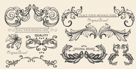 vector set  calligraphic design elements and page decoration, floral elements Vector