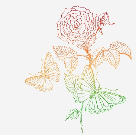 Romantic doodle background with rose and butterfly, illustration