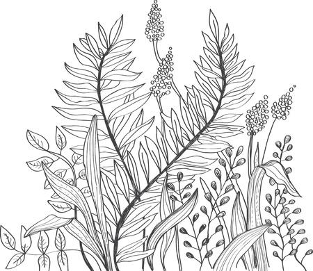 dibujos lineales: Fondo romántico dibujo de flores para el diseño