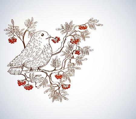 bullfinch and mountain ash background, beautiful illustration Stock Vector - 13912029