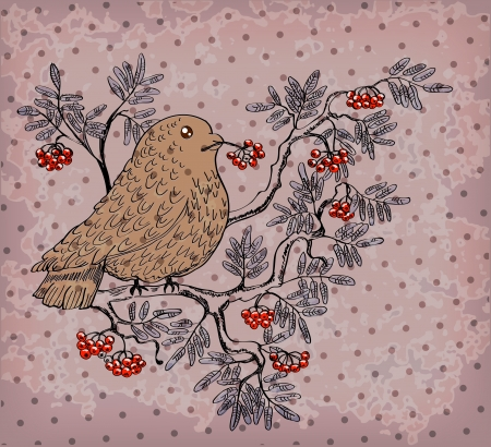 bullfinch: bullfinch and mountain ash background, beautiful retro illustration