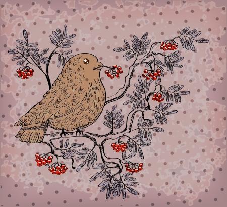 Vogelbeere: Dompfaff und Eberesche Hintergrund, schöne Retro-Illustration