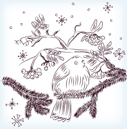 mountain ash: bullfinch and mountain ash background, beautiful illustration