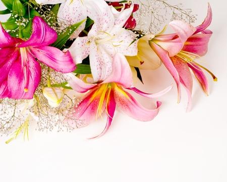 Weiß Und Rosa Lilien Blumen Hintergrund Lizenzfreie Fotos, Bilder ...