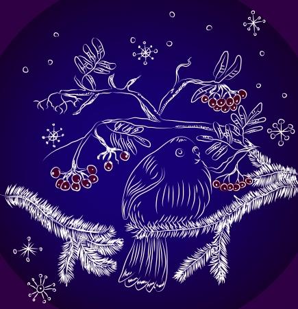 mountain ash: bullfinch and mountain ash dark blue background, beautiful  illustration Illustration