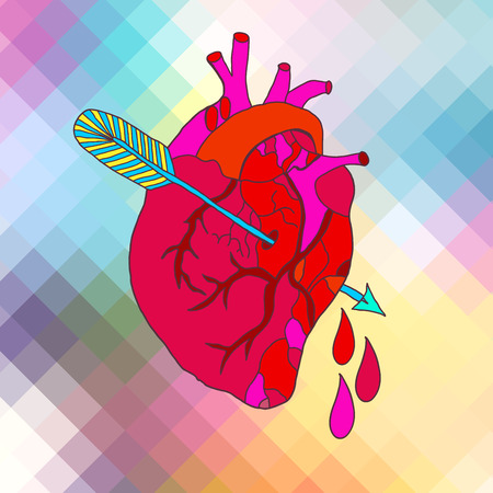 Color Anatomical heart with arrow and blood drops Vector
