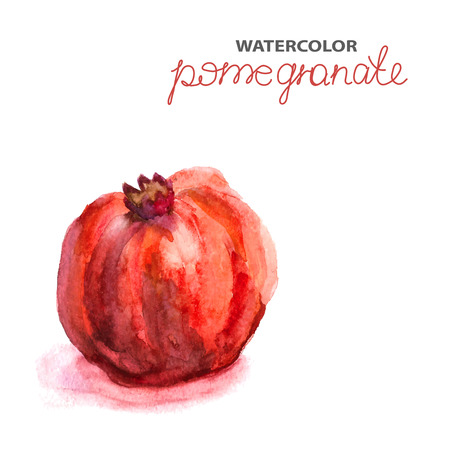 Background with watercolor pomegranate, natural illustration