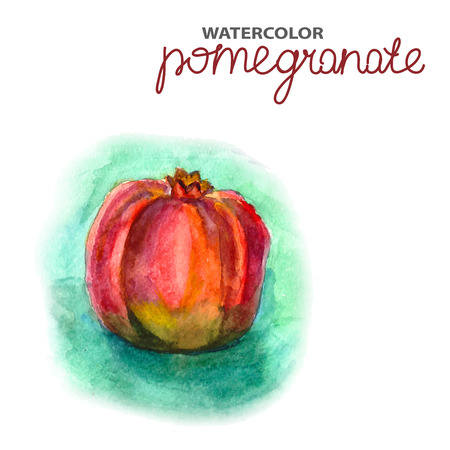 Background with watercolor pomegranate, natural illustration Vector