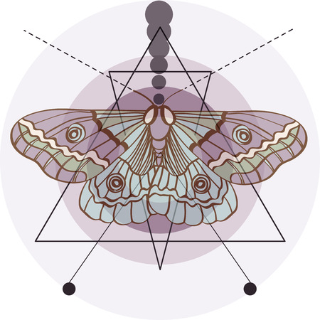 Hipster old fashion background with moth and geometric elements