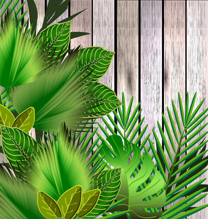 tropical garden: Tropical green leaves over wood. Floral design background. Bright color vibrant illustration