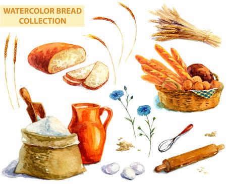 흰색 위에 수채화 빵 모음
