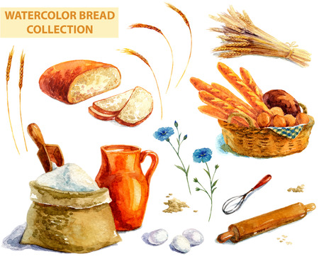 loaf of bread: Watercolor bread collection over white