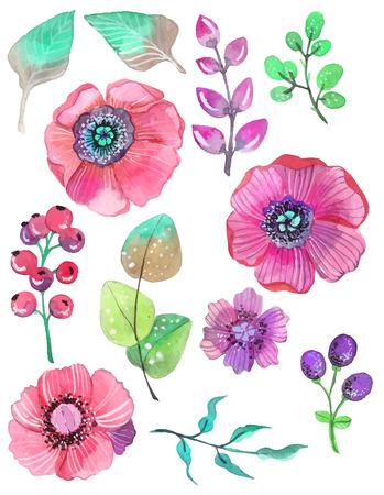 나뭇잎과 꽃, 수채화 일러스트와 함께 화려한 꽃 모음.