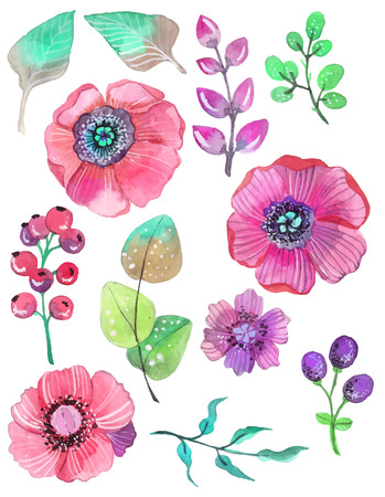 Colorful floral collection with leaves and flowers, watercolor illustration.