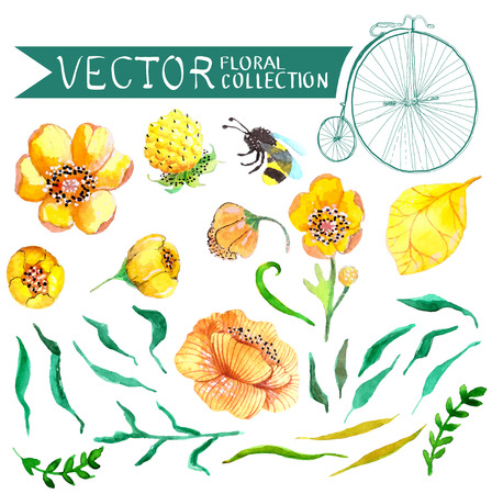 Watercolor yellow and green flowers and bee collection for wedding design