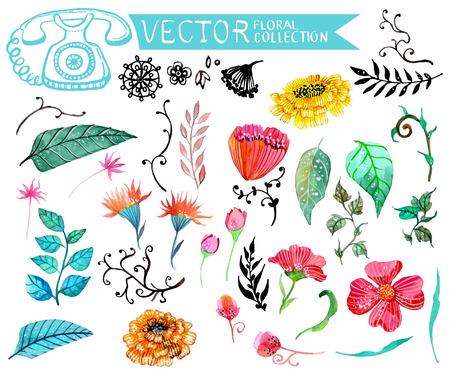 다른 디자인을위한 수채화 꽃 모음 일러스트