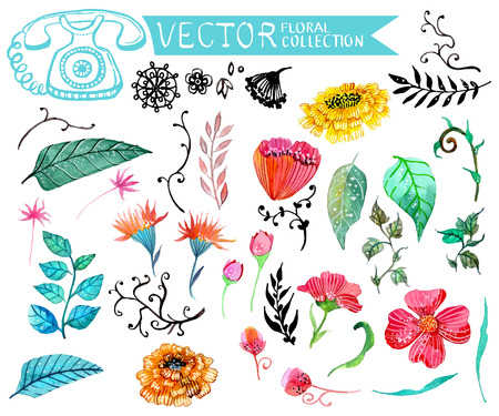 Watercolor flowers collection for different design Stock Illustratie