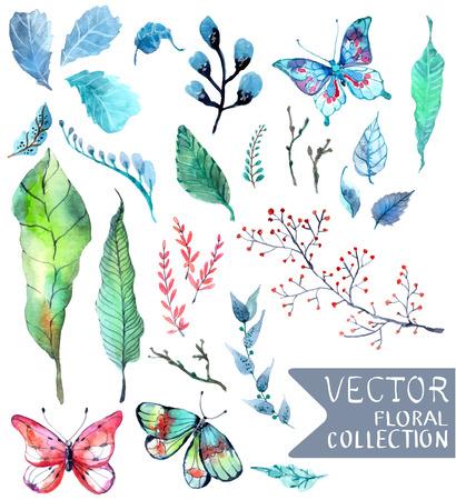the flowers: Acuarela flores de la colecci�n de dise�o diferente con elementos florales naturales y la mariposa Foto de archivo