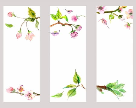 Watercolor apple flowers, beautiful background for design, banner set