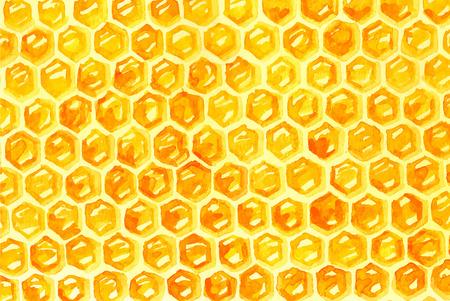 흰색 위에 수채화 Honeycomd