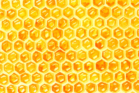 honeycomb: Watercolor Honeycomd over white