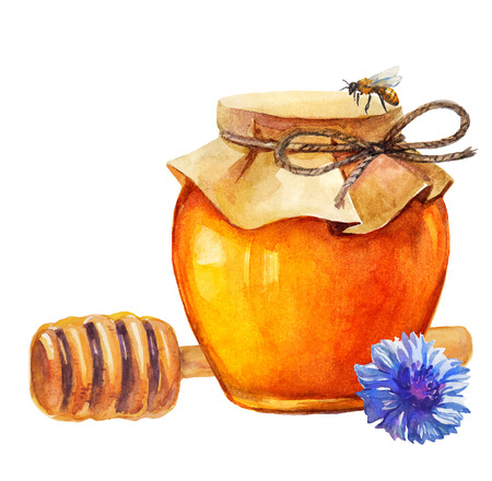 Watercolor Honey jar and honey stick and cornflower over white