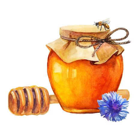 흰색 위에 수채화 꿀 항아리와 꿀 막대기와 수레 국화