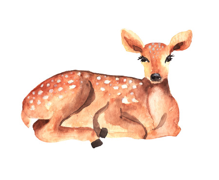 Watercolor deer over white