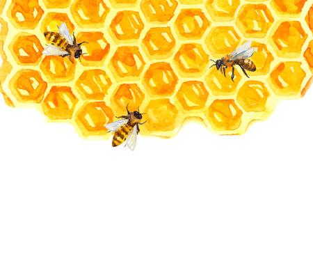 수채화 Honeycomd과 흰색 위에 꿀벌