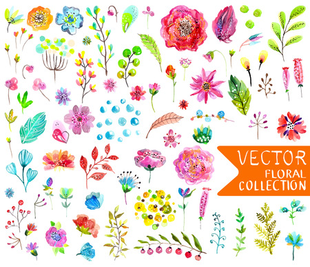 Watercolor flowers collection for different design over white
