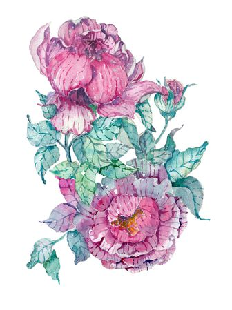 Watercolor peonies bouquet over white background. Hand painted pink flowers and green leaves. Floral illustration for design Stock Photo
